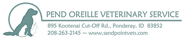Sandpoint Area Vets | North Idaho Veterinarian | Pet Lodging | Pet Grooming